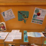 "Display items showing the difference between the terms ""Hispanic"" and ""Latino"" and describing the relevant geography."